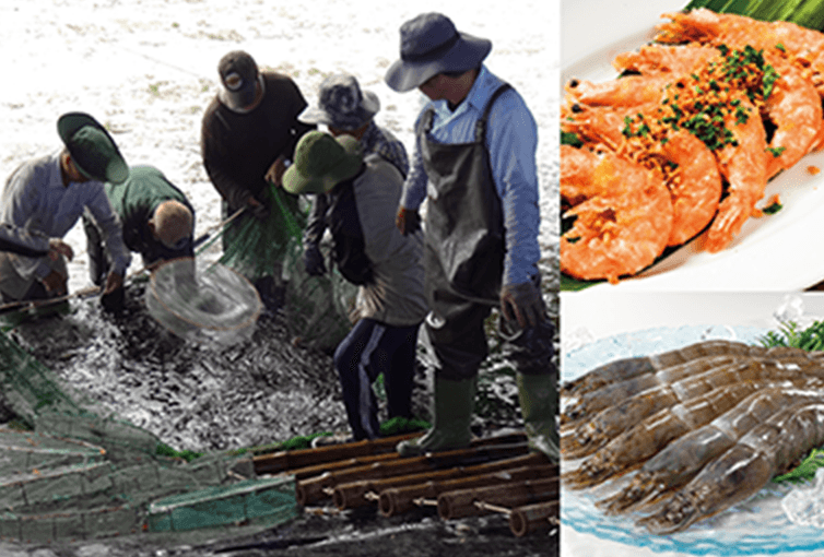 """""""Developing New Sustainable Seafood Products and Offering at 30 Cafés and Dining"""