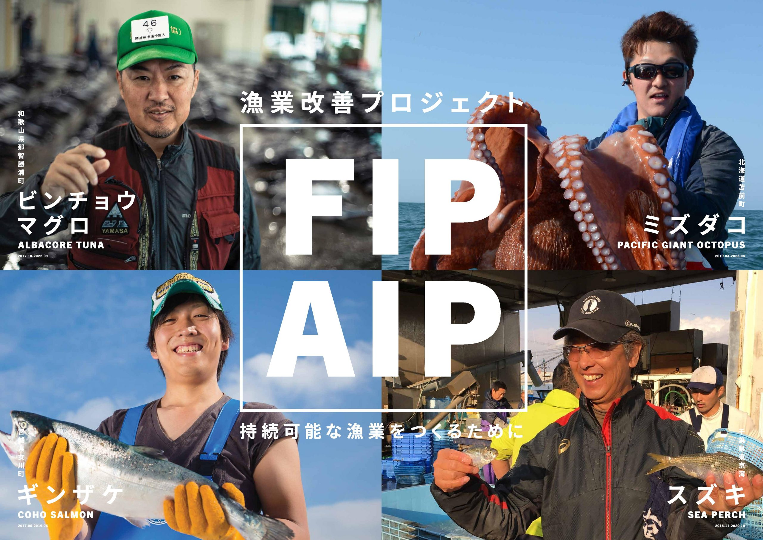 Sharing the Journey: FIP/AIP Landscape in Japan